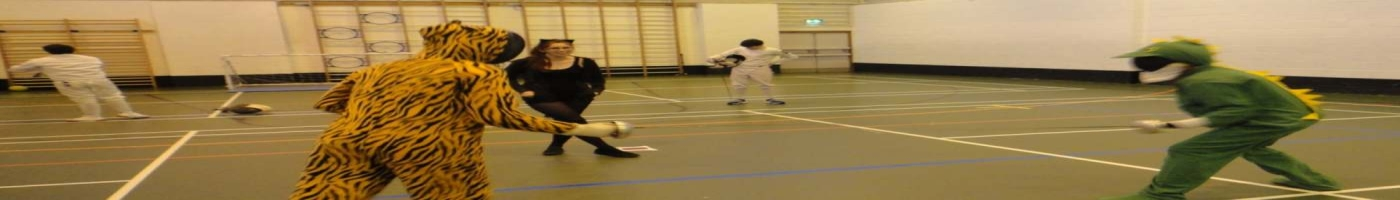 Fencing Epee in Fancy Dress